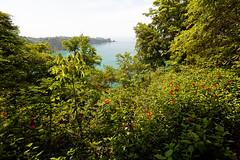 baudchon-baluchon-costa-rica-manuel-antonio-14