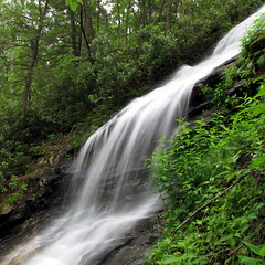 Cascades (BlueRidgeKitties) Tags: square waterfall spring may northcarolina cascades blueridgeparkway westernnorthcarolina cascadestrail wataugacounty southernappalachians ccbyncsa canonpowershotsx10is ebjeffresspark