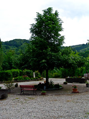 Tierfriedhof am Wisenberg, Lufelfingen (Swissrock) Tags: dog animals schweiz hund jessy katzen naturpark hauenstein tiergrab kantonbaselland tierfriedhofamwiesenberg tierfriedhoflufelfingen