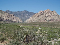 032 Red Rock Canyon