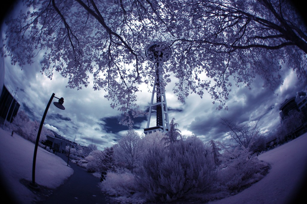 space needle in IR