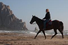Lynda Roeller riding Paho - Roeller Nuckols Equestrians Morro Strand 08 June 2010