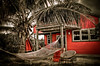 Our pad for the last evening (MDSimages.com) Tags: world travel vacation color texture june contrast digital island photography blog cabin nikon media relaxing palm atlantic palmtree hammock processing bahamas subtropical cay chill commonwealth islet hdr bajamar 2010 bungalo d300 travelphotography photomatix michaelsteighner mdsimages hyliteproductions photomike07 mdsimagescom hylitecom