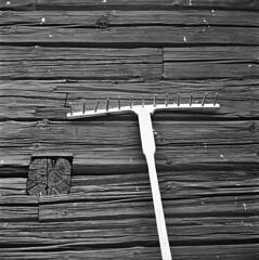 (mathias shoots analogue) Tags: wood blackandwhite stilllife 120 6x6 sweden 15 150 uppsala sverige nophotoshop rodinal kiev88 oldtimes 125 ilfordfp4 rurallife gamlauppsala homedevelopment volna2880