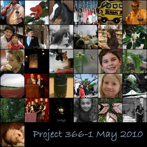 Project 3661 May 2010 Mosaic-1