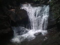 Dukes Creek Falls 1