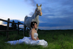 White horse (Tatjanna of T.M Photography) Tags: road wood bridge flowers blue wedding horse white storm black reflection wet field grass yellow night clouds trash forest fence river freedom model shoes montana day dress view ride princess sleep dream cream lookout dirt soak missouri swamp porch after thunderstorm session mitchell gown maiden ulm graze ackerman