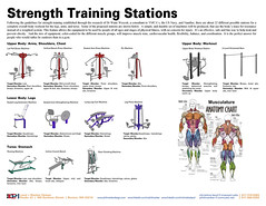 Strength Training Circuit-2