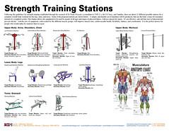 Strength Training Circuit-2