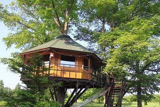【三部牧場】ツリーハウス tree house
