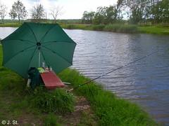 Dänemark 2010, Mein Angelplatz / Denmark 2010, My fishing place (Yogi 58) Tags: denmark fishing trout dänemark forelle angeln troutfishing yogi58 forellenangeln jörgsteiof