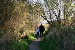 Stroll (Neil T) Tags: trees couple romance footpath stroll