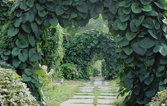 Grishko National Botanic Gardens - Kiev, Ukraine (dbmmedia) Tags: ukraine kiev kyiv touristattraction nationalbotanicalgarden grishko gryshko touristattractionkiev touristattractionukraine touristattractionkyiv