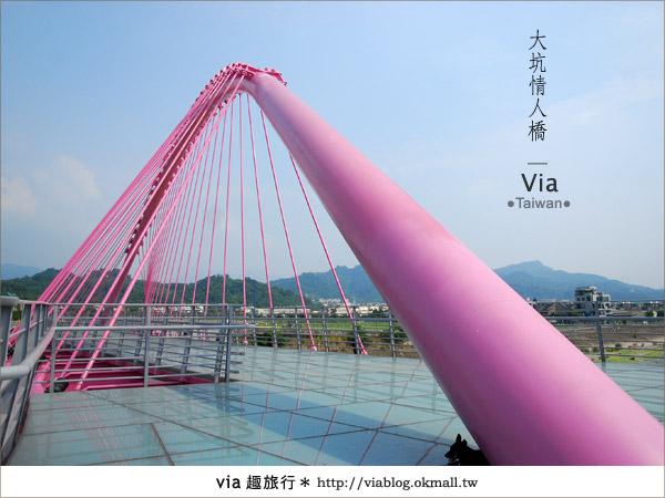 【大坑情人橋】新的台中約會景點~浪漫粉紅色情人橋10