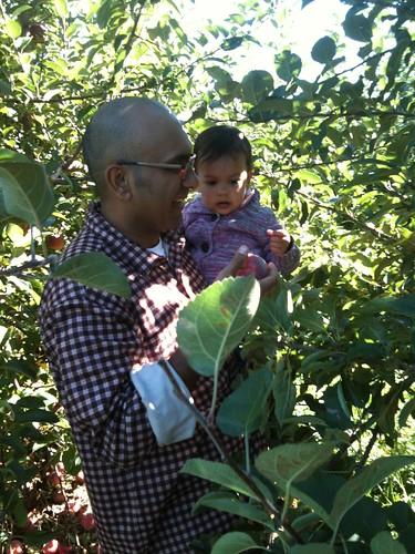 Laila & Salim picking apples