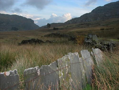 IMG_6442 slate fence copy