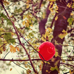 306/365: Have a Nice Day! (pixelmama) Tags: november autumn red tree treebranches redballoon gettyimages 2010 smileyface haveaniceday lighthousebeach project365 evanstonillinois 3652010