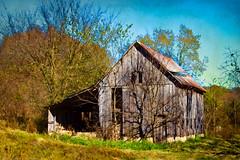 Old Finley Falls Road Barn (DebbiRobertson) Tags: texture barn rural ruins missouri seymour