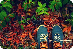 Jugando al escondite (Yavanna Warman {off}) Tags: old autumn feet colors grass socks vintage foot shoe leaf victoria colores sneakers canvas pineapple otoo stripped catchy slippers antiguo laces hideout zapatillas calcetines hierba pias espadrille cruzado proceso flickraward