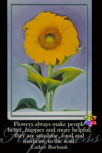Flower POWER v.4.0
