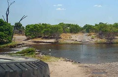 Savuti Channel, Chobe National Park, Botswana.