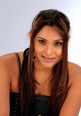 Indian Actress Ramya Hot Sexy Images Set-2  (18)