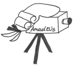 Amadeus - Analyse mathematikdidaktischer Elemente in Unterrichtssituationen
