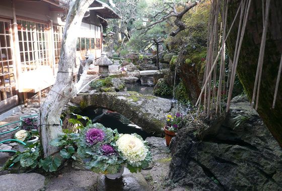 Amazing restuarant garden