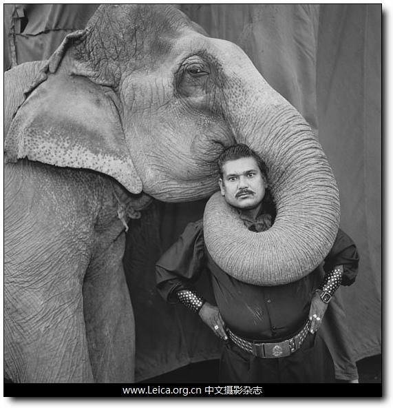 『我最棒的作品』Mary Ellen Mark:象的肖像