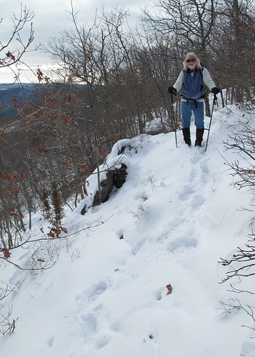 Tough going on a cliff in snow