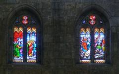 Saints and Martyrs (tortipede) Tags: france church fuji cathedral gimp frana stainedglass vitrail midi condom hdr hugin gers occitnia vitrall qtpfsgui s8000fd migjorn condm veirial