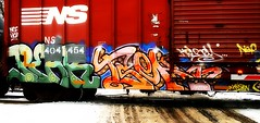 Pear - Tsek (mightyquinninwky) Tags: road winter snow cold ice logo geotagged graffiti moving stencil crossing ns tag graf indiana windy slush tags tagged southernindiana railcar pear spraypaint boxcar graff graphiti rolling stamped hoa blacktop railroadcrossing inmotion buffed nsf norfolksouthern trainart rollingstock paintedtrain railart crossingarm warninglight krisen spraypaintart ohiorivervalley movingart trafficcontroldevice taggedtrain paintedsteel boxcarart evansvilleindiana rollingart tsek taggedboxcar paintedboxcar movingfreight nurrenbernroad paintedrailcar taggedrailcar geo:lon=87627377 nurrenbernroadcrossing geo:lat=37943499 taggedsteel
