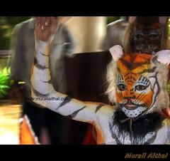(Aithal's) Tags: pili huli murali vesha canons3 hulivesha aithal pilivesha tigerdance aithals udupitigerdance tigerdanceudupi