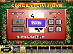 free First Past The Post gamble bonus game
