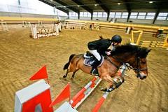 Hop! (Armando Banfetti (Matteo Mangiarotti)) Tags: canon eos jump 5d salto hop cavalli lombardia 2010 concorso ippica equitazione ostacolo saltoostacoli buscate armandobanfetti matteomangiarotti 1635mmf728lusm