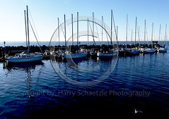 _DSF0166_01 (Harry Schaetzle) Tags: bear portrait people usa france cars peru sport japan deutschland boot hotel ship harry totem ferrari flags porsche poles olympic alfaromeo ferries formel1 speedscating masarati schaetzle germanyphotographer