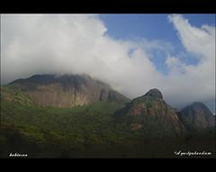 Agastyakoodam Peak
