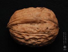 研究称坚果可降低胆固醇