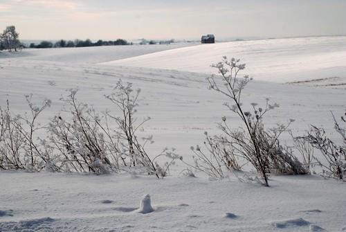 zima pod Lwowem - 02/2010