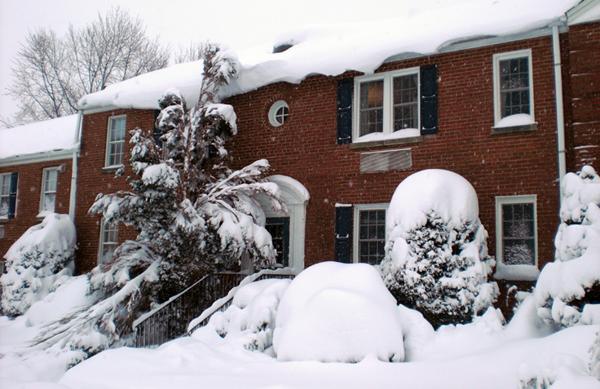 01 Snowpocalypse 2.0