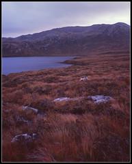 Amongst Bracken (spodzone) Tags: lighting light orange mountains film nature landscape scotland colours stormy boulder velvia sultry bracken distance farnorth largeformat assynt shenhao naturewatcher benmorassynt