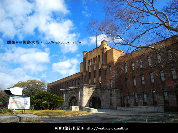 【via關西冬遊記】大阪城天守閣!冬季限定:梅園梅花盛開24