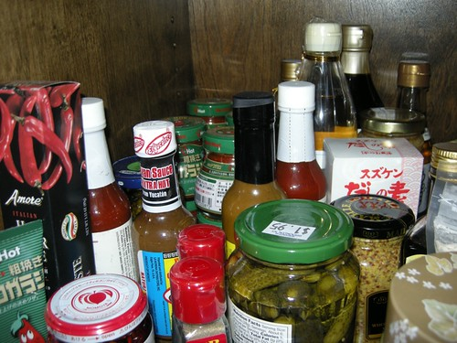 Fridgin' Out: Gourmet Spice Cabinet (BK)