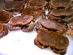 Cangrejos en el supermercado (harajuku_subway) Tags: ice animal crab hielo cangrejos
