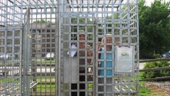 In Jail!