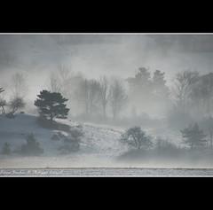 Cold morning in Champsaur III - Alps - France (Lucie et Philippe) Tags: famille winter mist france alps tree misty fog alpes vacances hiver noel arbre froid brouillard brume atmospher saintbonnet champsaur brumeux lecollet mygearandmepremium mygearandmebronze mygearandmesilver mygearandmegold