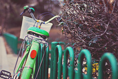 Life is like riding a bicycle - in order to keep your balance, you must keep moving. (Kelly West Mars) Tags: park green bike vintage 50mm asia downtown bokeh f14 naturallight retro southkorea daegu bicyle taego nikond80 eyecandyactions floraballaactions