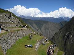 Terrazas de Cultivo, Machu Picchu, Peru.