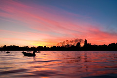 Sunrise Over Henley Lake, Masterton (Mark Solly (F-StopNinja)) Tags: morning pink trees newzealand lake reflection water silhouette clouds sunrise duck ripples henley masterton marksolly