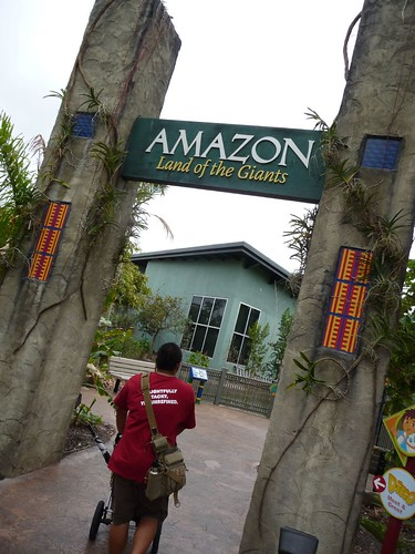 amazon at the miami zoo.
